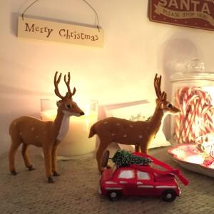 Oui Oui-Navidad 2015-navidad con luces-ciervos y rojos (2)