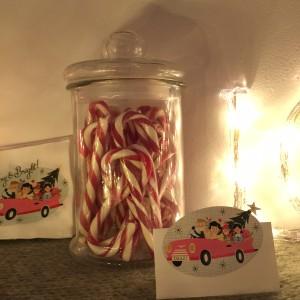 Oui Oui-Navidad 2015-navidad con luces-ciervos y rojos (3)