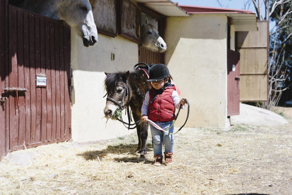 Oui Oui-caballos de guadalajara-marta machin (1)