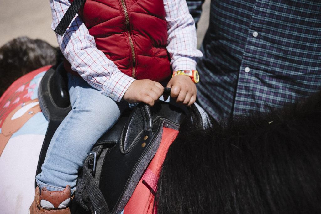 Oui Oui-caballos de guadalajara-marta machin (8)