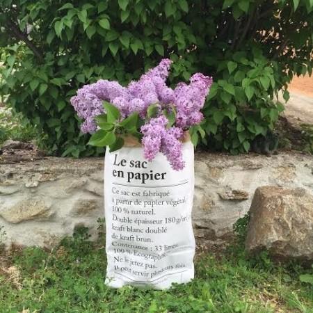 Le sac en papier / The paper bag