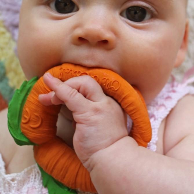 Mordedor zanahoria