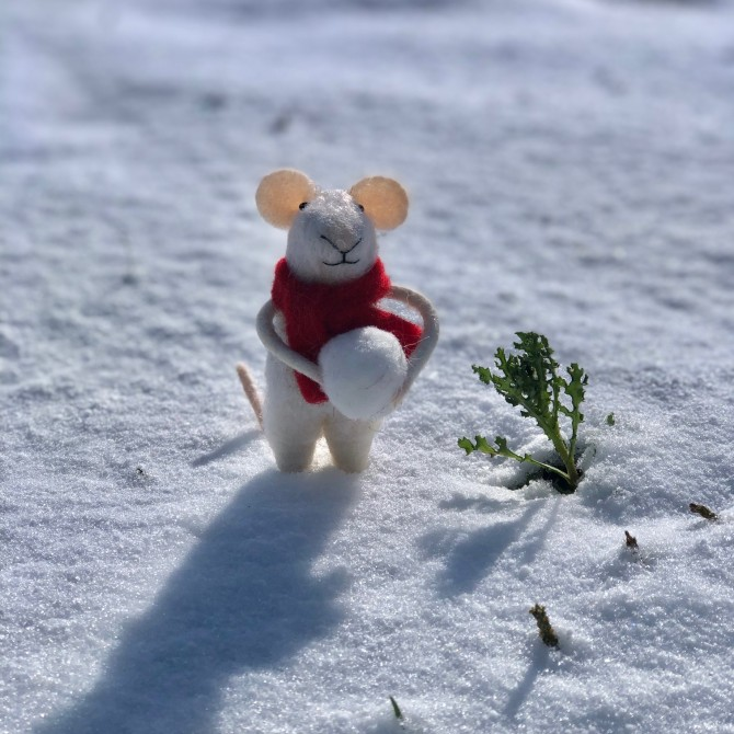 Ratoncito con bola de nieve