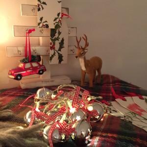Oui Oui-Navidad 2015-navidad con luces-ciervos y rojos (4)